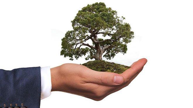 Çevreyi korumaya 38,2 milyar lira harcandı
